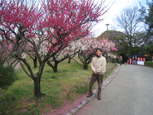 midorigaoka 020.JPG